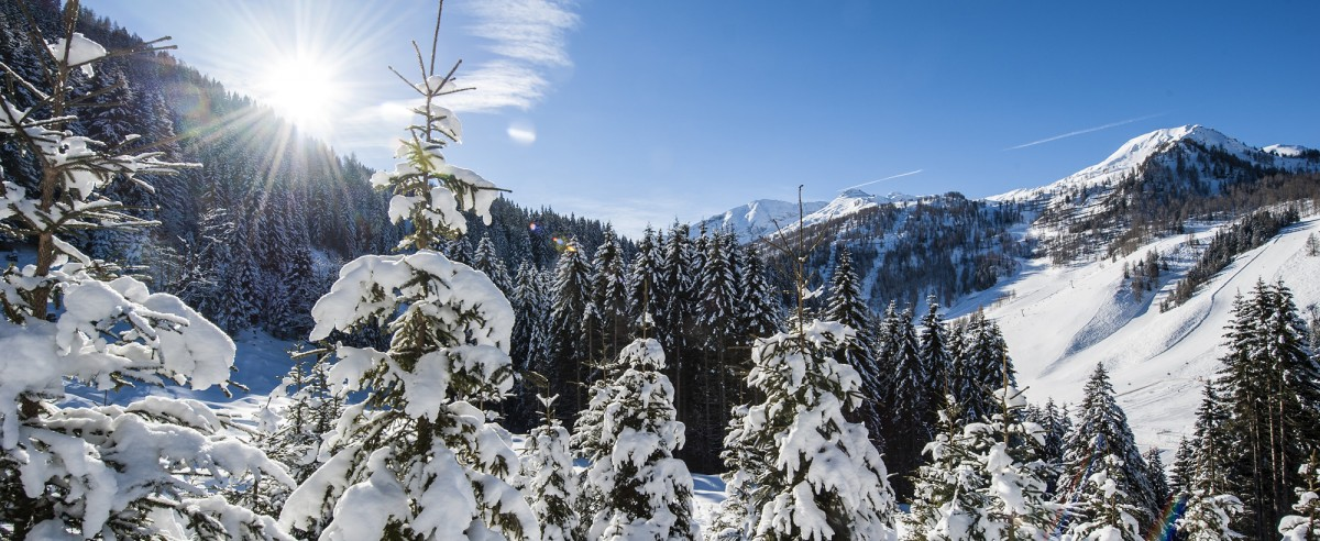 Winterlandschaft in Ski amadé